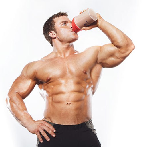 protein muskler
