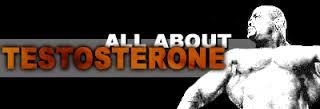 Allt handlar om testosteron. Eller?